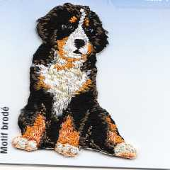 Applique Bernese Mountain Dog