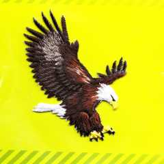 Applikation - Eagle